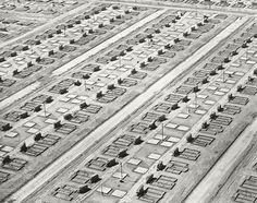 Foundation and Slabs, Lakewood, California, 1950, William A. Garnett.
