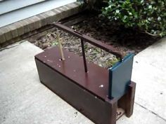 Need an inexpensive live animal trap, build a box trap. I used these as a kid to catch rabbits. Works great to catch squirrels. Did this to control squirrels...