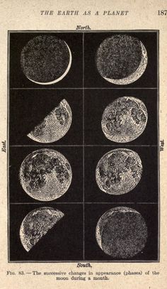 I would love a poster sized print of this please. The phases of the Moon. Laboratory lessons in general astronomie nemfrog Photo Wall Collage, Picture Wall, Collage Art, Vintage Prints, Vintage Art, French Vintage, Vintage Space, Vintage Travel, Photowall Ideas