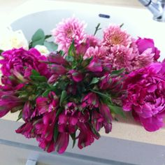 Flowers in sink in cool water just waiting to be played with!