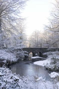 The river Lagan, between Belfast and Lisburn, in the snow. Typical Northern Irish spring!
