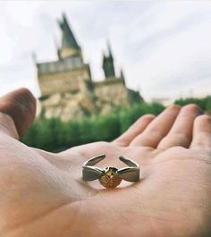 I need this ring
