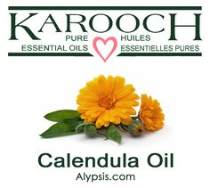 CALENDULA Calendula officinalis (infused in sunflower seed oil) An infused oil containing carotene and vitamin A, which are both valuable healing agents for the skin. Used in small amounts with other carrier oils. Diluting Essential Oils, Calendula Oil, Bottle Sizes, Oil Bottle, Carrier Oils, Sunflower Seeds, Seed Oil, Pure Products, Lotions