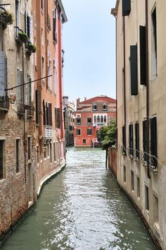 Venice Alias the City On Water Submerging