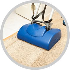 We have set a new standard of that is hard to surpass by any local rug cleaning company.