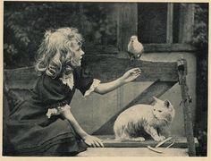 bij den haard 1901 foto meisje poes -vogel