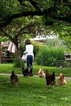 Country Living ~ chickens on the farm Country Farm, Country Life, Country Girls, Country Living, Country Roads, Country Style, Vie Simple, Chickens And Roosters, Farms Living