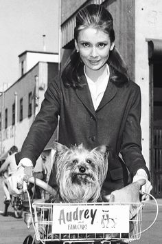 Audrey Hepburn and Mr. Famous on the location of Breakfast at Tiffany's, 1961