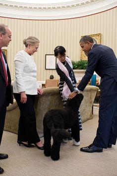 President Obama meets Burma's Aung San Suu Kyi. ThingLink Interactive Image.