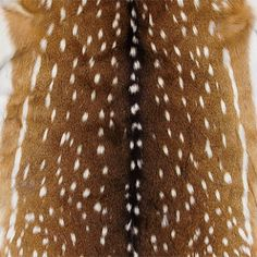 Axis Deer Hide Pillow