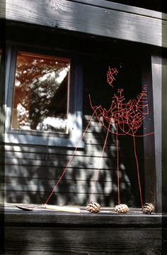 """Mended spiderwebs by Nina Katchadourian, as part of her """"Uninvited Collaborations with Nature"""". For six weeks she repaired broken webs with red thread. Each morning, following the repairs, she would find the webs fixed and the patches discarded by the spider."""