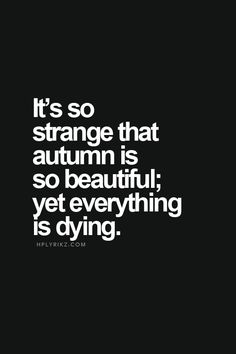 Es muy extraño como el otoño es muy bonito aún todo se muere. Yo creo que esto quiere decir que la naturaleza ayuda cosas en el mundo como puede ver un huracán pero a la misma ves le ayuda a las plantas crecer por ser agua.