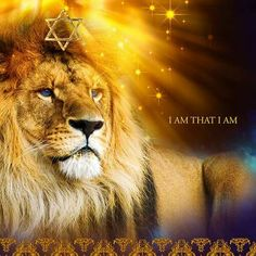 Lion of Judah, King of Kings, prophetic art. Lion Of Judah Jesus, Judah And The Lion, Lion And Lamb, Christian Images, Christian Art, African American Expressions, Christian Warrior, Lion Love, Tribe Of Judah