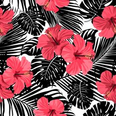 Tropical coral flowers and leaves on black and white background. Cute Patterns Wallpaper, Cute Wallpaper Backgrounds, Love Wallpaper, Cute Wallpapers, Iphone Wallpaper, Hibiscus, Makeup Wallpapers, Apple Watch Wallpaper, Black And White Background