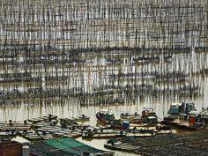 seaweed Farm by Thierry Bornier on 500px