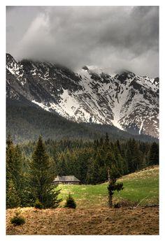 Kiralyko / Piatra Craiului National Park, Romania.