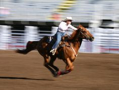 Tell it like it is: A Tribute to the American Quarter Horse in the Tehachapis