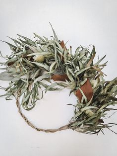 Eucalyptus Everlasting bouquet Rustic Wreaths, Dried Eucalyptus, Magnolia Leaves, Rustic French, Dry Hands, Grapevine Wreath, Grape Vines, Christmas Wreaths, Bouquet