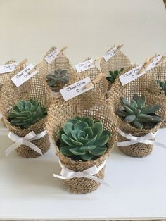 Succulent wedding favors - Succulent favors for weddings, birthdays, christenings, baby showers or any special occasion weddingfavors wedding favors ad succulent Wedding Favors And Gifts, Cool Wedding Gifts, Burlap Wedding Favors, Burlap Wedding Decorations, Wedding Souvenir, Beach Wedding Favors, Bridal Gifts, Wedding Invitations, Succulent Wedding Favors