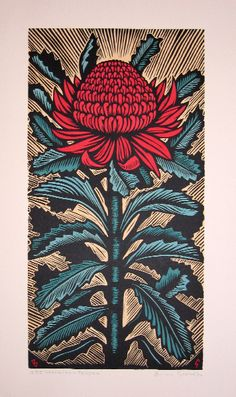 Bow Wow > bruce goold My favourite for the week. Waratah flower
