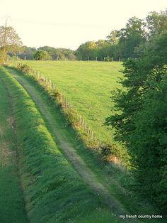 track through fields