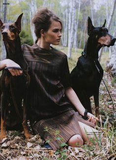 love the dobermans.........and the print that too...
