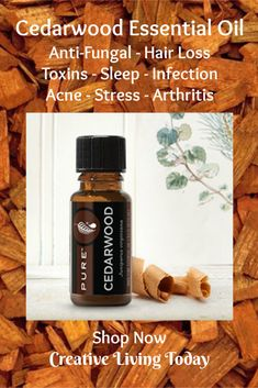 Cedarwood Essential Oil for Anti-fungal - Hair Loss - Toxins - Sleep - Infections - Acne - St. - Cedarwood Essential Oil for Anti-fungal – Hair Loss – Toxins – Sleep – Infections – Acne – Stress – Chest Acne Fungal Infection Essential Oils For Face, Young Living Essential Oils, Hair Loss Treatment, Acne Treatment, Cedarwood Essential Oil, Body Acne, Hair Loss Remedies, Fungal Infection