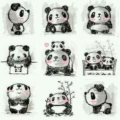 Omg Panda!<3