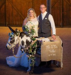 Wedding beer burros continue to grow in popularity. In certain states, such as Arizona, there are business owners. Beer Wedding, Cowgirl Wedding, Dream Properties, Jolly Holiday, Best Beer, Zoo Animals, Ever After, Save The Date, Hair And Nails