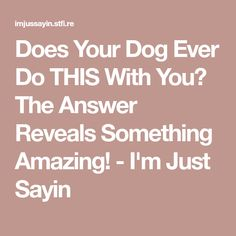 Does Your Dog Ever Do THIS With You? The Answer Reveals Something Amazing! - I'm Just Sayin