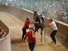The future of the medieval horse race in the Tuscan city of Pistoia was in doubt after two horses were put down after breaking their legs during the race. Medieval Horse, Free Planet, Two Horses, Animal Rights, Horse Racing, Europe, Italy, World, Cruelty Free