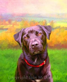 Dog Portrait  your pet my crazy RISK FREE by ScottieInspired, $40.00