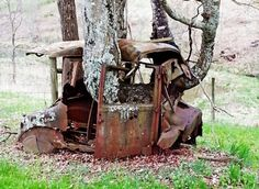 Abandoned car with Tree growing through. ..♥.Nims.♥