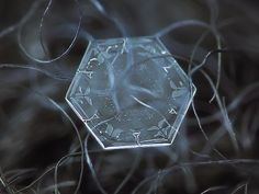 """Amazing macro-photography of individual snowflakes [10 Pictures] Photographer Alexey Kljatov takes incredible close-up photos of snowflakes in his backyard in Moscow. """"I capture snowflakes on the open balcony of my house, mostly on glass surface, lighted by an LED flashlight from the opposite side of the glass, and sometimes in natural light, using dark woolen fabrics as background."""""""