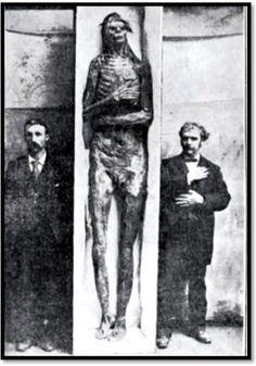 giant-skeleton-unknown.jpg