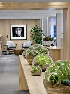 7 firms design their own office.