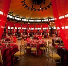 Circus Oz | Home
