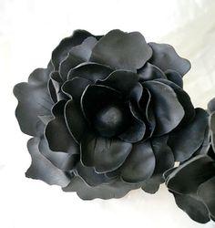 Black peony