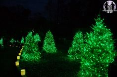 Busch Gardens Williamsburg brings holiday cheer and family traditions to Williamsburg, Virginia