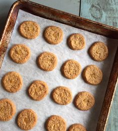 Triple ginger coins - An easy little cookie that packs a punch. You can freeze the dough too!