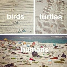 Save the beaches. Save the oceans. Save the planet.Shaking my head at the image's. Save Planet Earth, Save Our Earth, Our Planet, Save The Planet, Earth Day, Save Mother Earth, Mother Nature, Salve A Terra, We Are The World