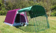 pets at home foxglove guinea pig hutch - Google Search Guinea Pig Run, Guinea Pig Hutch, Guinea Pig House, Rabbit Hutch And Run, Rabbit Hutches, Pigs Eating, Dwarf Rabbit, Small Rabbit, Natural Instinct