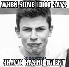 Shawn Mendes meme