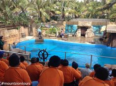 Take a trip to uShaka Marine World with with your colleagues to have some great time at the beach. Travel Tips, Africa, Tours, World, Beach, The Beach, Travel Advice, Beaches, The World