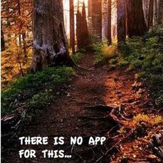 And that, is perfect. #goplaces #solitude #alonetime #adventureseeker #adventures #woods #outdoors #nature #naturelovers #naturelove #naturegirl #hiking #hikingadventures #hikinggirl #bigworld #natural #earth #healthylifestyle #fitnesslifestyle #motivation #meditation