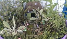 Herb Fairy Garden....Cute! I want to make one again! Seeing this makes me miss my grandma Timmy :(