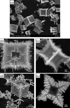 Fuzzy boxes of lanthanum hexaboride crystals
