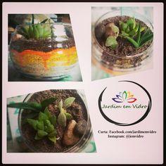 Terrarium Garden Succulents Arte Decoração. Terrários Personalizados - JARDIM EM VIDRO ✌  Já curtiu a página?  Facebook.com/jardimemvidro  Insta: @jemvidro segue lá ;)