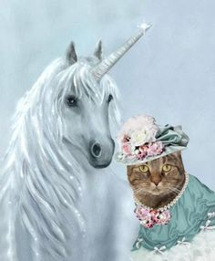Unicorn and cat