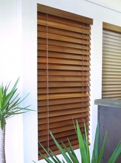 wooden vertical blinds - Google Search